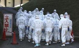 Nhật Bản phát hiện thêm một ổ dịch cúm gia cầm có khả năng lây nhiễm cao