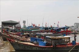 293 tỷ đồng nâng cấp, mở rộng cảng cá Định An
