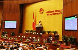 Sáng nay 12/11, Quốc hội phê chuẩn việc bổ nhiệm ba thành viên Chính phủ và Thẩm phán Tòa án nhân dân tối cao