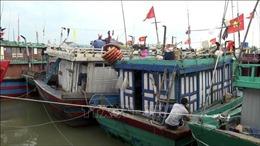 Nghệ An cấm tàu thuyền ra khơi để ứng phó bão số 13