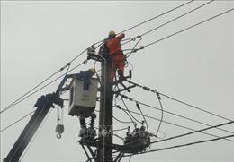 Dự kiến các sự cố điện tại miền Trung được khắc phục trong ngày 16/11
