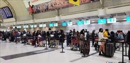 Đưa khoảng 350 công dân Việt Nam từ Canada về nước