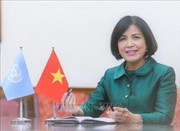 Việt Nam thúc đẩy hợp tác quốc tế về khắc phục hậu quả bom mìn