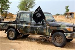 Phiến quân bắt cóc nhân viên cứu trợ nhân đạo và quan chức địa phương tại Nigeria