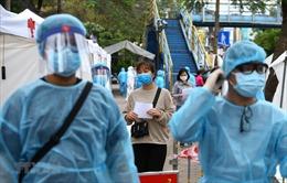 UNDP: Người dân đồng thuận với chính sách và hành động của Chính phủ Việt Nam trong ngăn chặn COVID-19