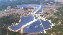 Phát triển nhiều dự án điện gió, điện mặt trời quy mô lớn