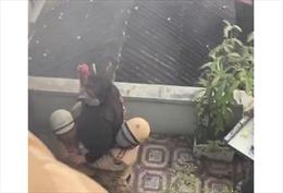 Cảnh sát giao thông Hải Phòng kịp thời cứu cụ bà trong đám cháy