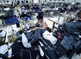 Anh tiếp tục dành ưu đãi GSP cho hàng hóa nhập khẩu từ Việt Nam