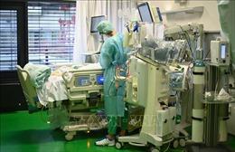 Số ca tử vong do COVID-19 tại Đức và Bỉ lần lượt vượt ngưỡng 40.000 ca và 20.000 ca