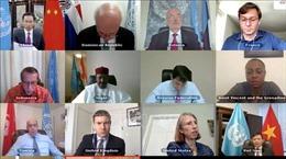 HĐBA kêu gọi chống khủng bố, bạo lực cực đoan tại Tây Phi, Sahel