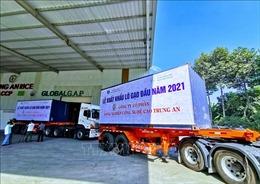 Lô gạo thơm xuất khẩu đầu năm 2021 đạt giá 750 USD/tấn