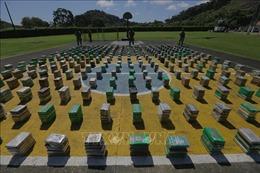Panama thu giữ gần 90 tấn ma túy trong năm 2020