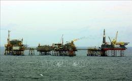 Tìm cơ hội đầu tư khi ngành dầu khí gặp khó