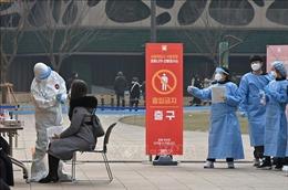 Hàn Quốc chuẩn bị 250 trung tâm tiêm vaccine ngừa COVID-19