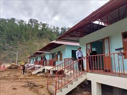 Sau bão lũ, mầm xuân lại nảy nở trên vùng núi cao Trà Leng