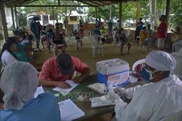 Brazil phát động chiến dịch chống các loại vaccine ngừa COVID-19 giả