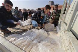 Liên hợp quốc cảnh báo tình trạng mất an ninh lương thực ở Syria