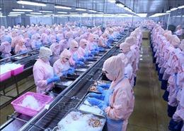 Bộ Công Thương: Hoa Kỳ không áp thuế chống bán phá giá tôm xuất khẩu Minh Phúlà quyết định khách quan, công bằng