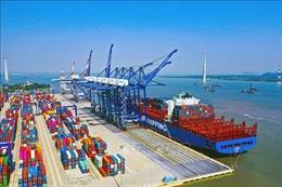 Tháo gỡ vướng mắc dự án xây dựng các bến container tại cảng Lạch Huyện