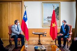 Quan hệ hữu nghị Việt Nam - Chile ngày càng gắn bó