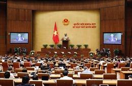 Quốc hội thảo luận báo cáo công tác nhiệm kỳ của Tòa án, Viện Kiểm sát