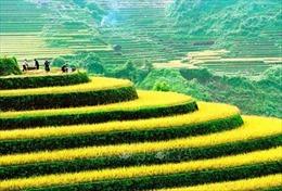 Phát động Cuộc thi ảnh Nghệ thuật Quốc tế lần thứ 11 tại Việt Nam