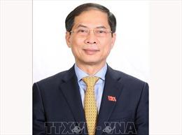Bộ trưởng Bùi Thanh Sơn: Ngành Ngoại giao góp phần thực hiện khát vọng của dân tộc, tầm nhìn của Đảng