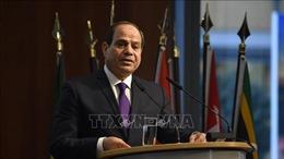 Ai Cập hy vọng quan hệ tốt đẹp với Qatar