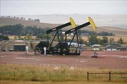 EIA: Sản lượng dầu đá phiến của Mỹ sẽ tăng 13.000 thùng/ngày