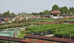 Phát triển bền vững du lịch nông nghiệp ở ĐBSCL - Bài 1: Từng bước định vị thương hiệu