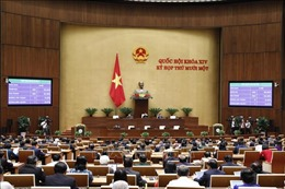 Công bố Luật Phòng, chống ma túy đã được Quốc hội thông qua tại Kỳ họp thứ 11