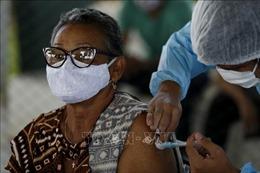 Brazil cấp phép thử nghiệm lâm sàng một loại vaccine ngừa COVID-19 mới