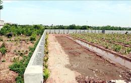 Tạm dừng các thủ tục chuyển nhượng đất đồng sở hữu tại Bà Rịa - Vũng Tàu