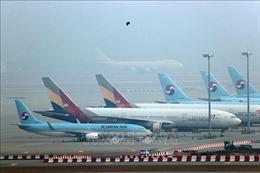 'Du lịch quốc tế không hạ cánh'phát huy hiệu quả trong đại dịch