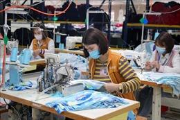 Rà soát sửa đổi, bổ sung quy định xử phạt hành chính trong lĩnh vực lao động