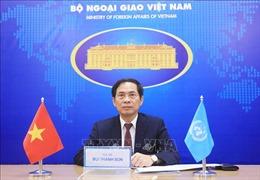 Việt Nam kêu gọi thực hiện sáng kiến 'Ngừng tiếng Súng' ở châu Phi