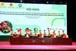 Hỗ trợ tiêu thụ vải thiều Hải Dương trên Gian hàng Việt trực tuyến