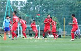 Honda Việt Nam vẫn tài trợ chính cho các đội tuyển bóng đá quốc gia