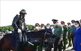 Xây dựng lực lượng Cảnh sát cơ động Kỵ binh tinh nhuệ