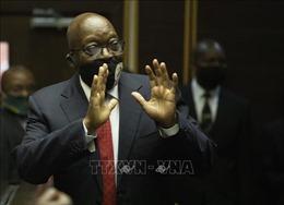 Tòa án Hiến pháp Nam Phi bác đơn kháng cáo của cựu Tổng thống J.Zuma