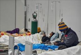 WHO quan ngại tình hình dịch COVID-19 tại Nam Mỹ