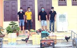 Bắt nhóm trộm cắp tài sản gây nhức nhối xã hội