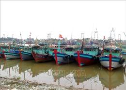 Bão số 2 gây thiệt lớn tại một số địa phương ven biển Nam Định