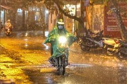 'Cơn mưa vàng'giải nhiệt cho Hà Nội