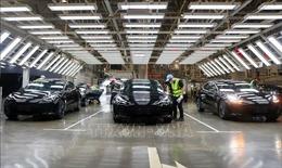 Tesla sẽ nâng cấp hệ thống kiểm soát hành trình cho ô tô điện