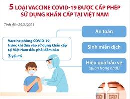 5 loại vaccine COVID-19 được cấp phép sử dụng khẩn cấp tại Việt Nam