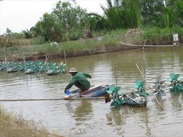 Đa dạng mô hình sản xuất kết hợp nuôi thủy sản sinh thái