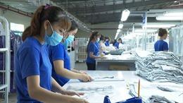 Giải quyết cho 46.407 lao động tạm dừng đóng quỹ hưu trí và tử tuất