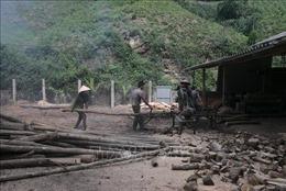Yên Bái nỗ lực thực hiện giảm nghèo bền vững