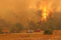 Cháy rừng ở Thổ Nhĩ Kỳ, 3 người thiệt mạng